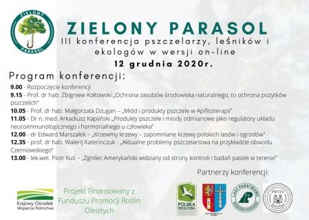Zielony parasol program